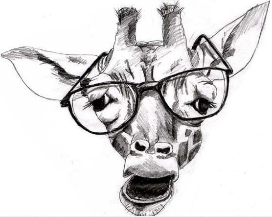 żyrafa, poradnia grudziądz, poradnia nadzieja,